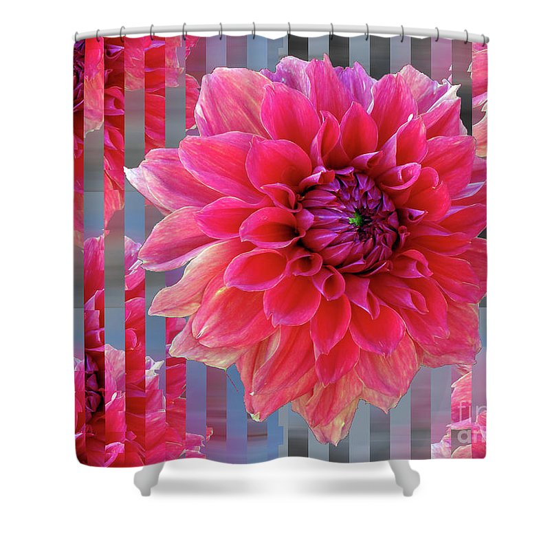 Dahlia Shower Curtain featuring the photograph Red Dahlia by Karen Lewis