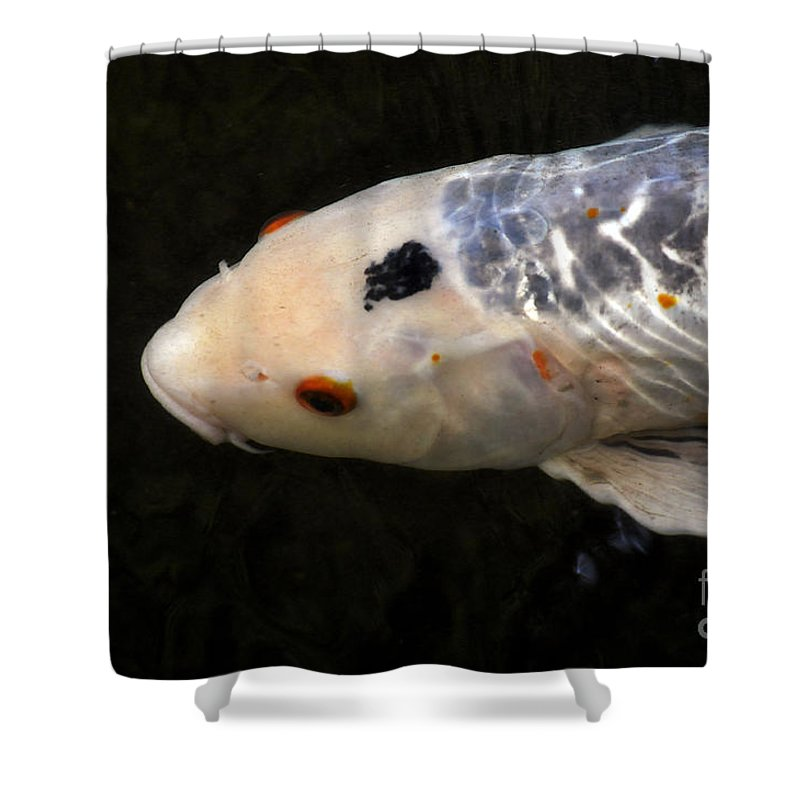 Clay Shower Curtain featuring the photograph Red Eye by Clayton Bruster