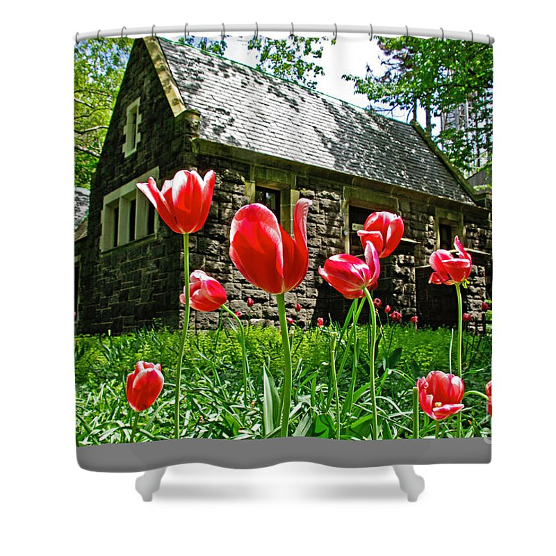 Red Shower Curtain featuring the photograph Red Flowers In Central Park by Zal Latzkovich