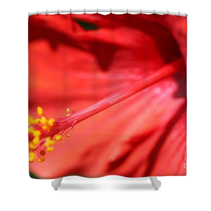 Red Shower Curtain featuring the photograph Red Hibiscus by Nadine Rippelmeyer