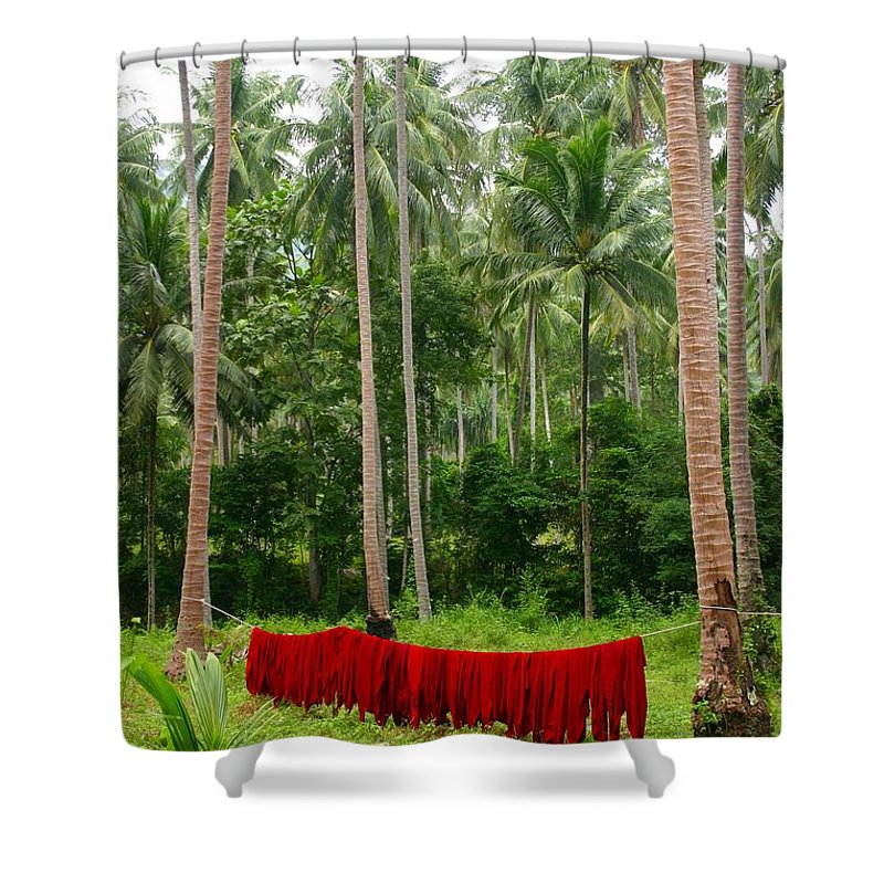 Palm Trees Shower Curtain featuring the photograph Red In The Jungle by Minaz Jantz