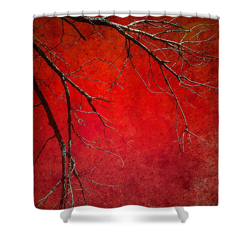 Zen Shower Curtain featuring the photograph Red Morning by Tara Turner