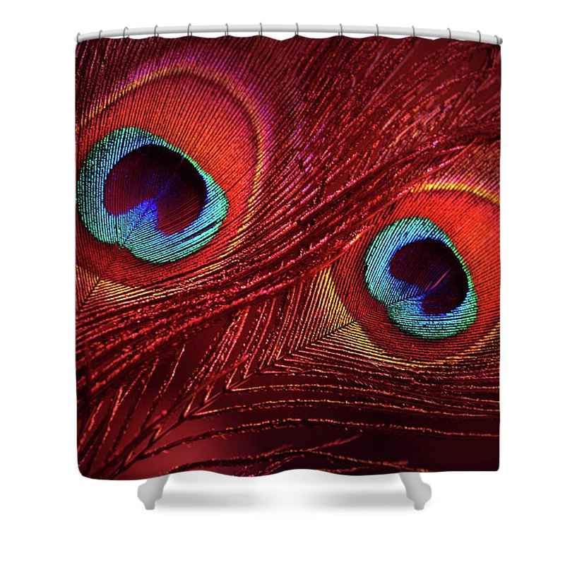 Jenny Rainbow Fine Art Photography Shower Curtain Featuring The Photograph Red Peacock Feathers By