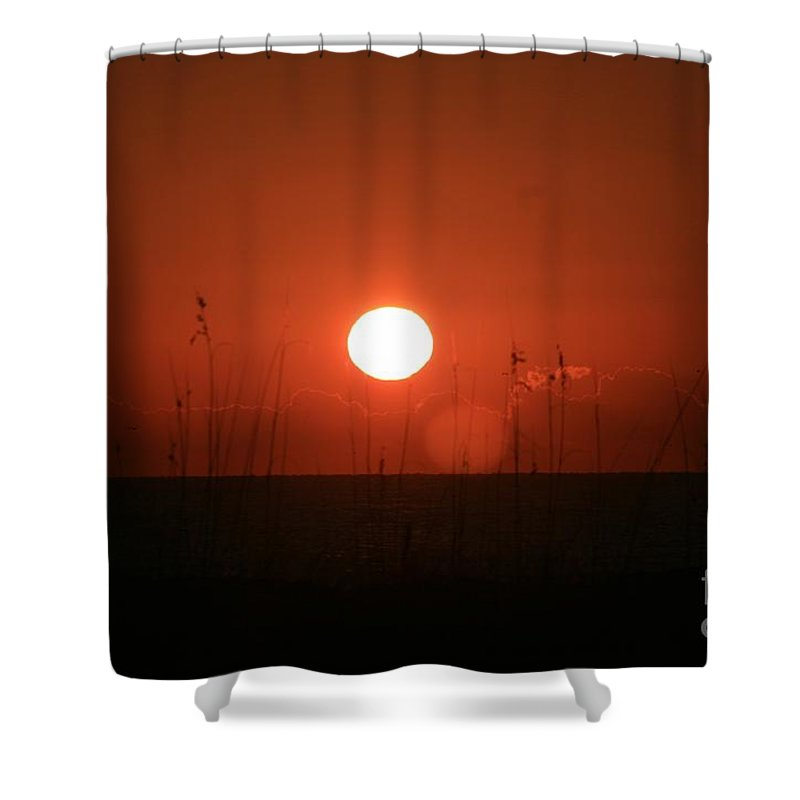 Sunset Shower Curtain featuring the photograph Red Sunset And Grasses by Nadine Rippelmeyer