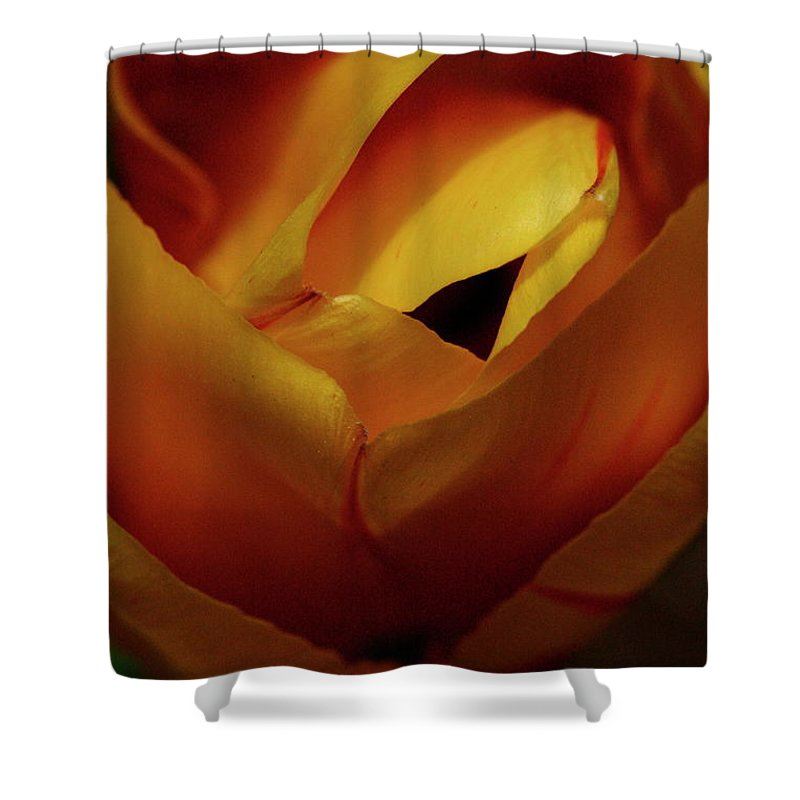 Flower Shower Curtain featuring the photograph Reds And Oranges by Laddie Halupa