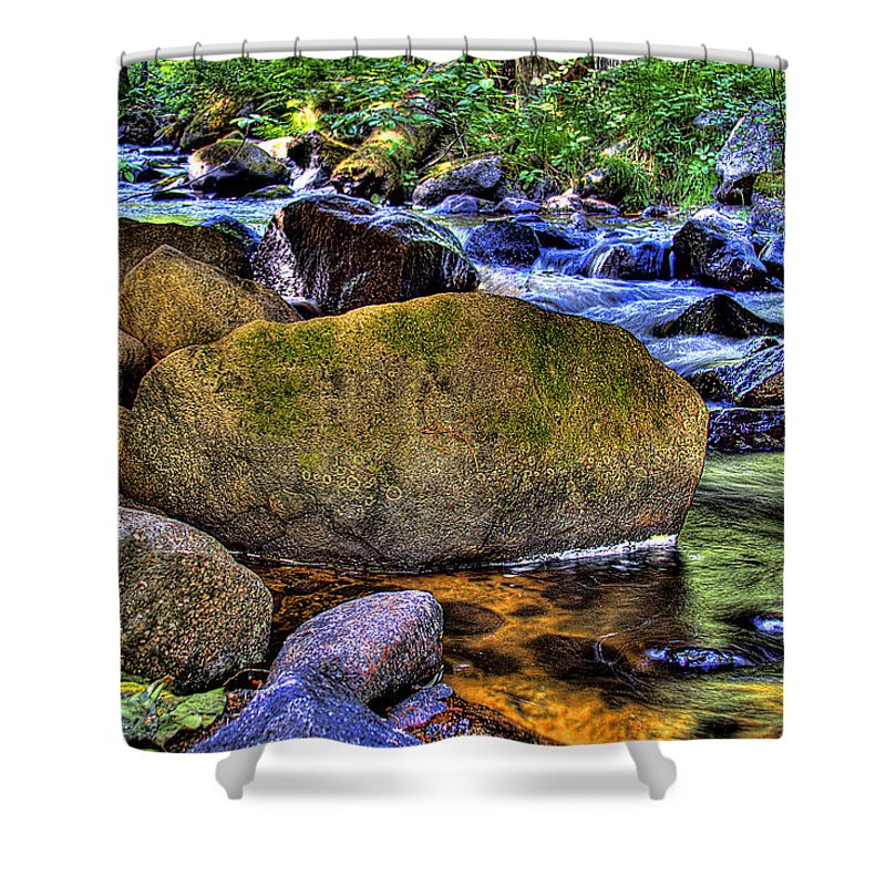 Reeder Creek Shower Curtain featuring the photograph Reeder Creek From Under The Bridge by David Patterson
