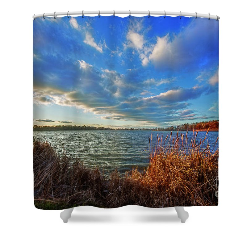Reeds Shower Curtain featuring the photograph Reeds And Wind by David Arment