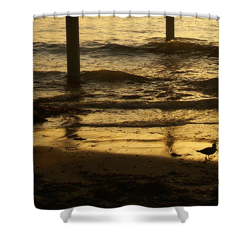 Ocean Shower Curtain featuring the photograph Reflecting Gold by Linda Shafer