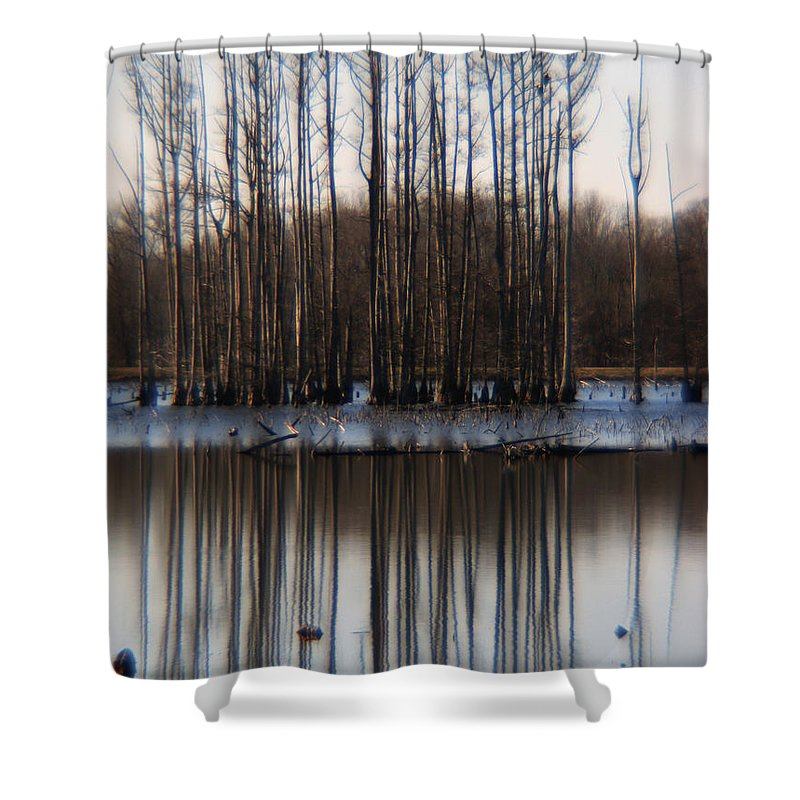 Nature Shower Curtain featuring the photograph Reflection by Amanda Barcon