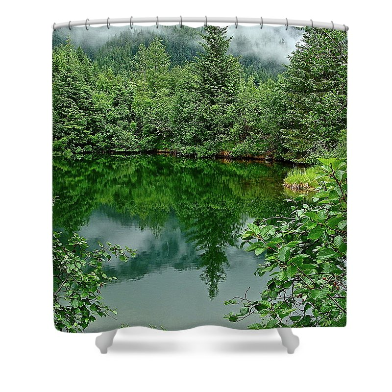 Trees Shower Curtain featuring the photograph Reflection by Diana Hatcher