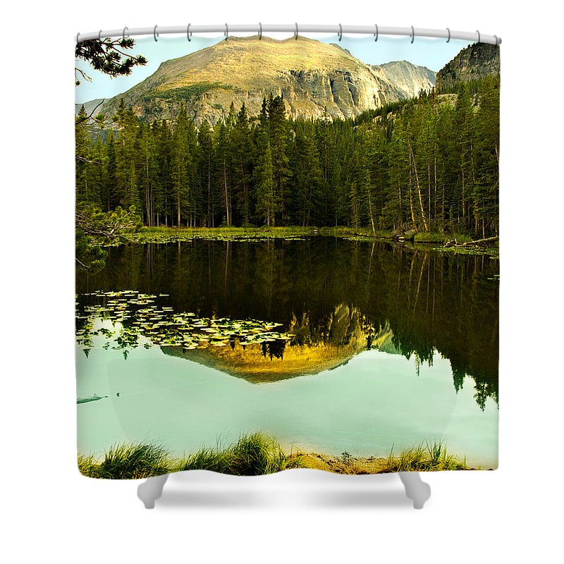 Reflection Shower Curtain featuring the photograph Reflection by Marilyn Hunt
