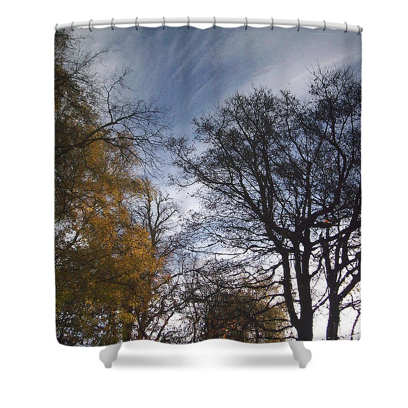 Tree Shower Curtain featuring the photograph Reflection by Munir Alawi