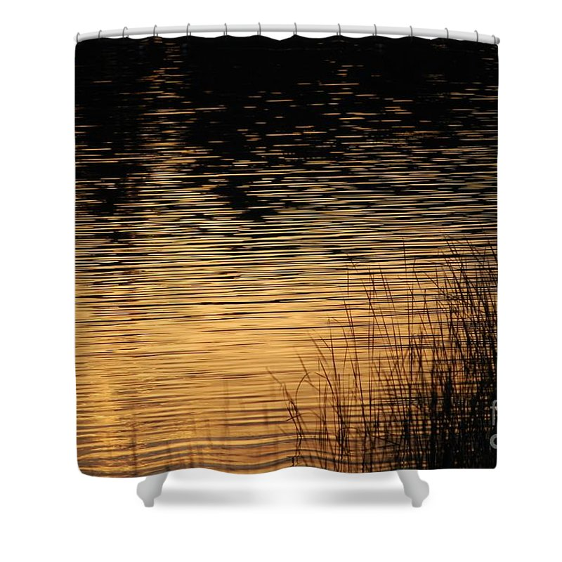 Digital Photo Shower Curtain featuring the photograph Reflection On A Sunset by David Lane