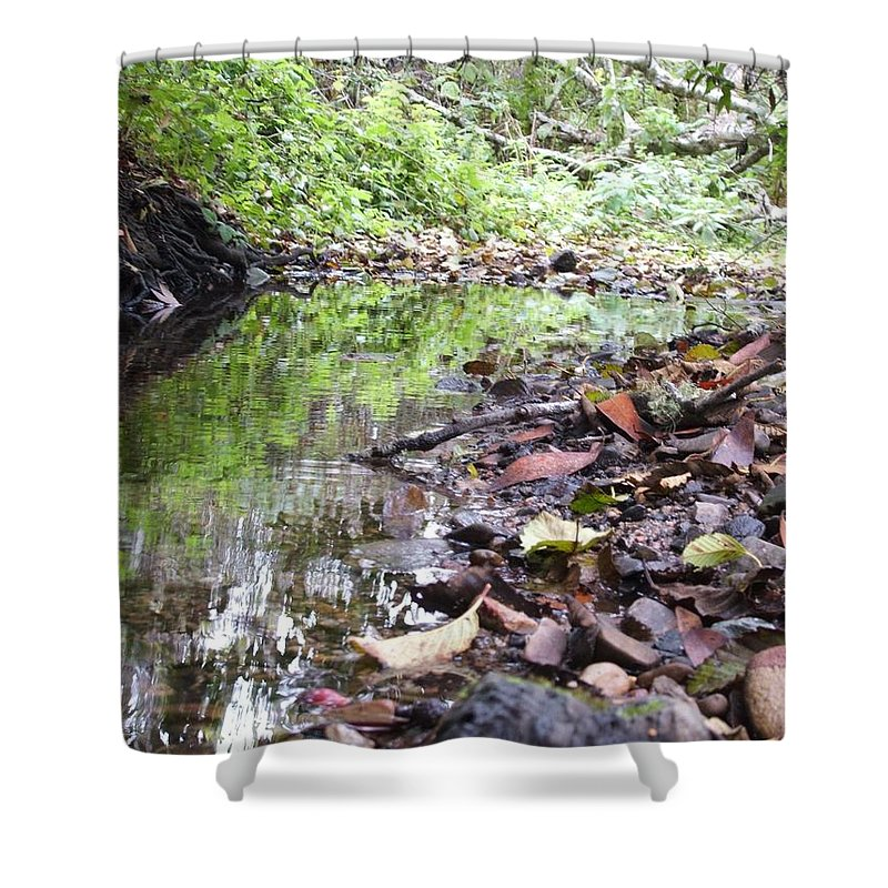 Woods Shower Curtain featuring the photograph Reflection by Shari Chavira