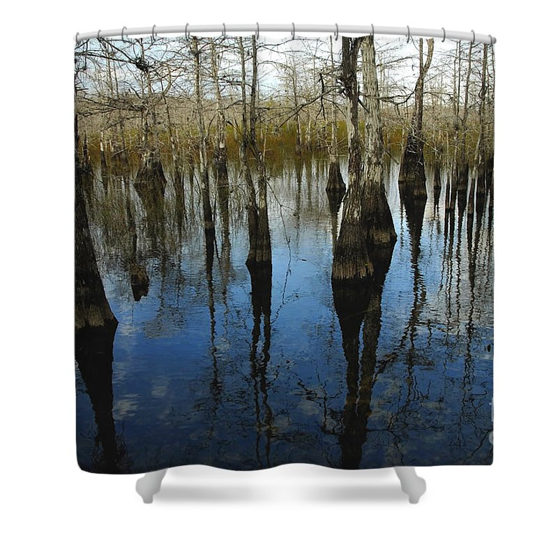 Bald Cypress Trees Shower Curtain featuring the photograph Reflections At Big Cypress by David Lee Thompson