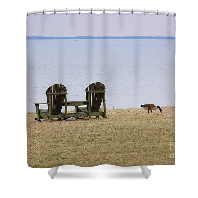 Chairs Shower Curtain featuring the photograph Relax by Debbi Granruth