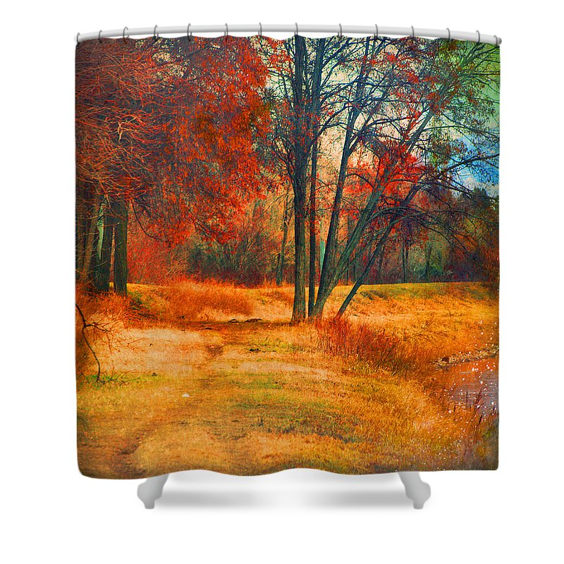 Trees Shower Curtain featuring the photograph Remembering The Places I Have Been by Tara Turner