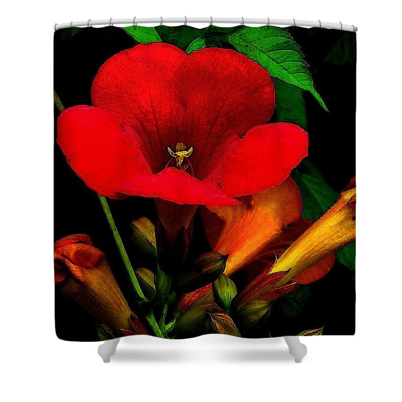 Flowers Shower Curtain featuring the painting Renaissance by RC DeWinter