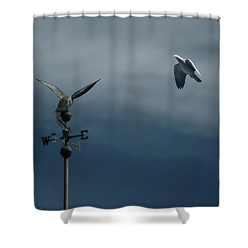 Argentina Shower Curtain featuring the photograph Rendez-vous by Osvaldo Hamer