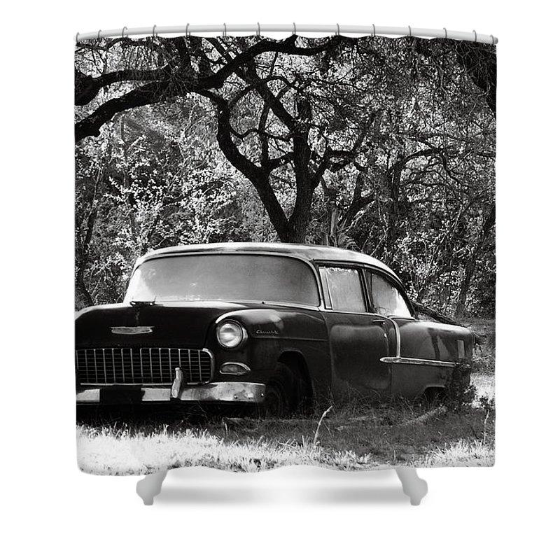 Americana Shower Curtain featuring the photograph Resting Amongst The Oaks by Marilyn Hunt
