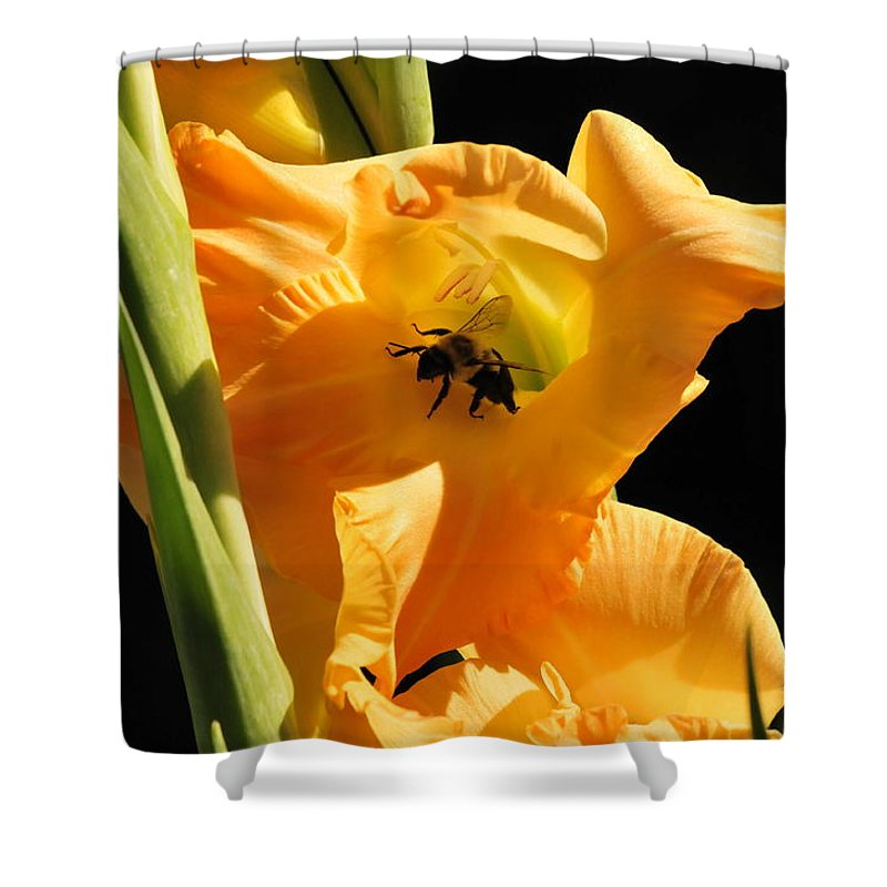 Bumblebee Shower Curtain featuring the photograph Resting In Petal Shade by Michelle DiGuardi