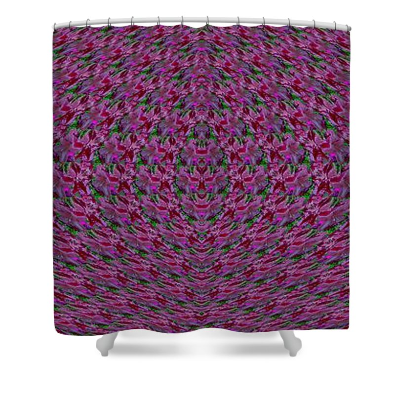 Abstract Shower Curtain featuring the digital art Rhody Of The Opera by Tim Allen