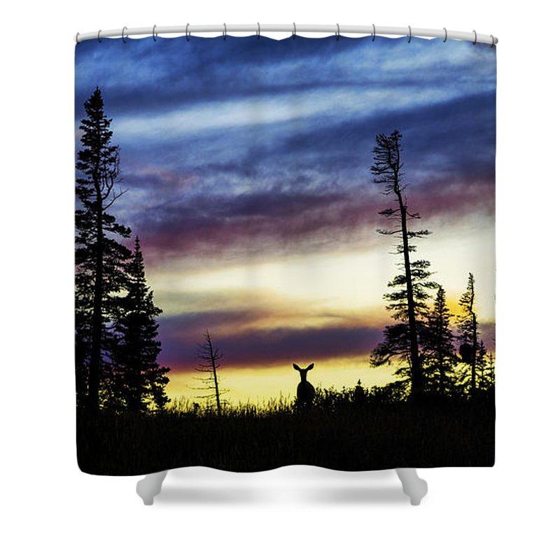 Ridge Silhouette Shower Curtain featuring the photograph Ridge Sihouette by Chad Dutson