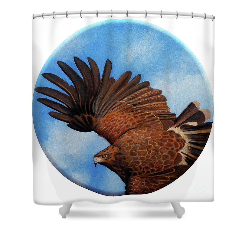 Hawk Shower Curtain featuring the painting Riding The Wind by Brian Commerford