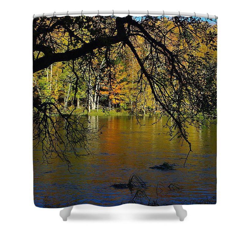 Fall Shower Curtain featuring the photograph River In The Fall by Alice Markham