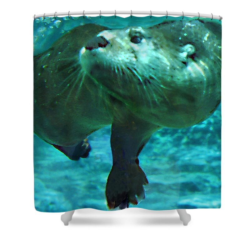 Animal Shower Curtain featuring the photograph River Otter by Steve Karol
