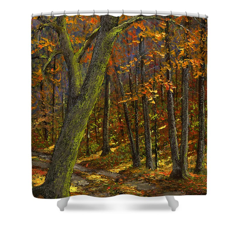 Landscape Shower Curtain featuring the painting Road In The Woods by Frank Wilson