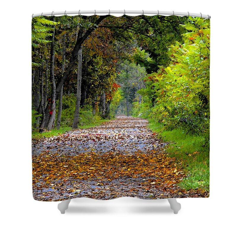 Fall Shower Curtain featuring the painting Road To Autumn by David Lee Thompson