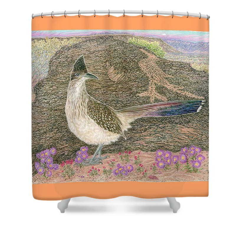 Roadrunner Shower Curtain featuring the drawing Roadrunner by Tim McCarthy