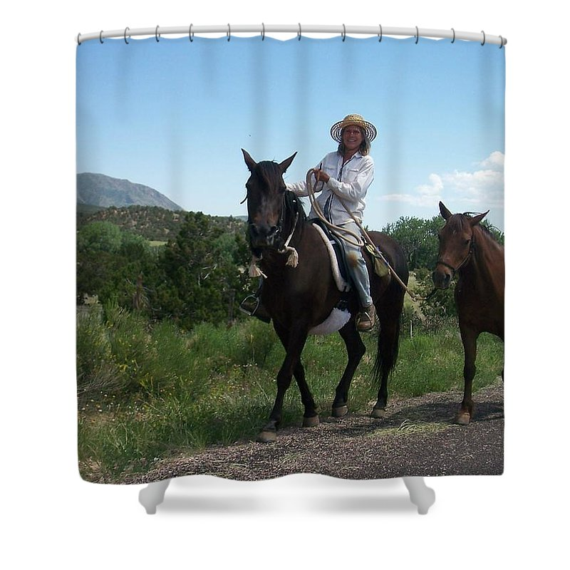 Horses Shower Curtain featuring the photograph Roadside Horses by Anita Burgermeister
