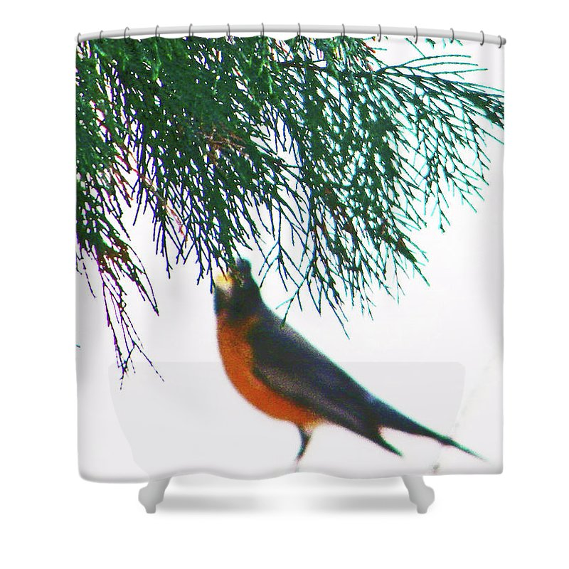Abstract Shower Curtain featuring the photograph Robin 2 by Lenore Senior