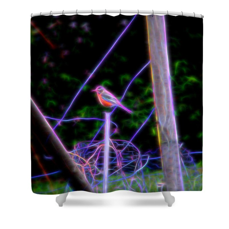 Robin Shower Curtain featuring the photograph Robin On The Wires by Ericamaxine Price