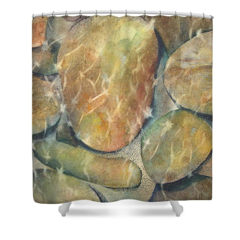 Rocks Shower Curtain featuring the painting Rocks In Stream by Marlene Gremillion