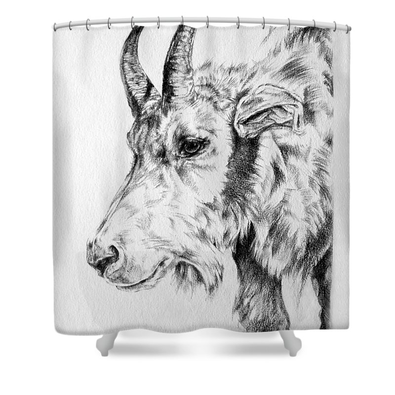 Mountain Goat Shower Curtain Featuring The Drawing Rocky By Derrick Higgins