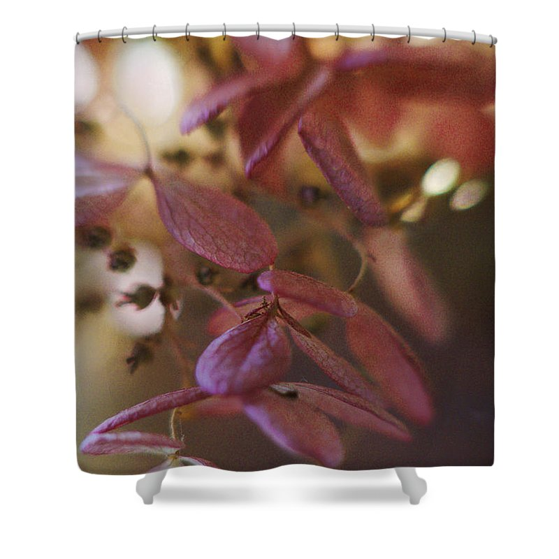 Flowers Shower Curtain featuring the photograph Romance by Arthur Miller