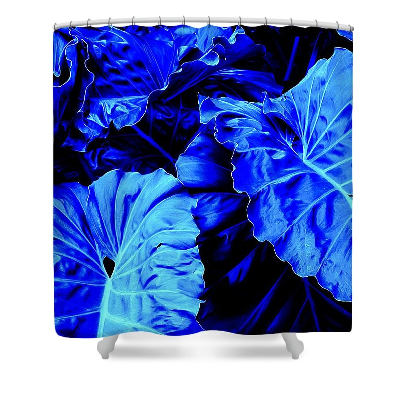 Blue Shower Curtain featuring the photograph Romney Blue by Ian MacDonald