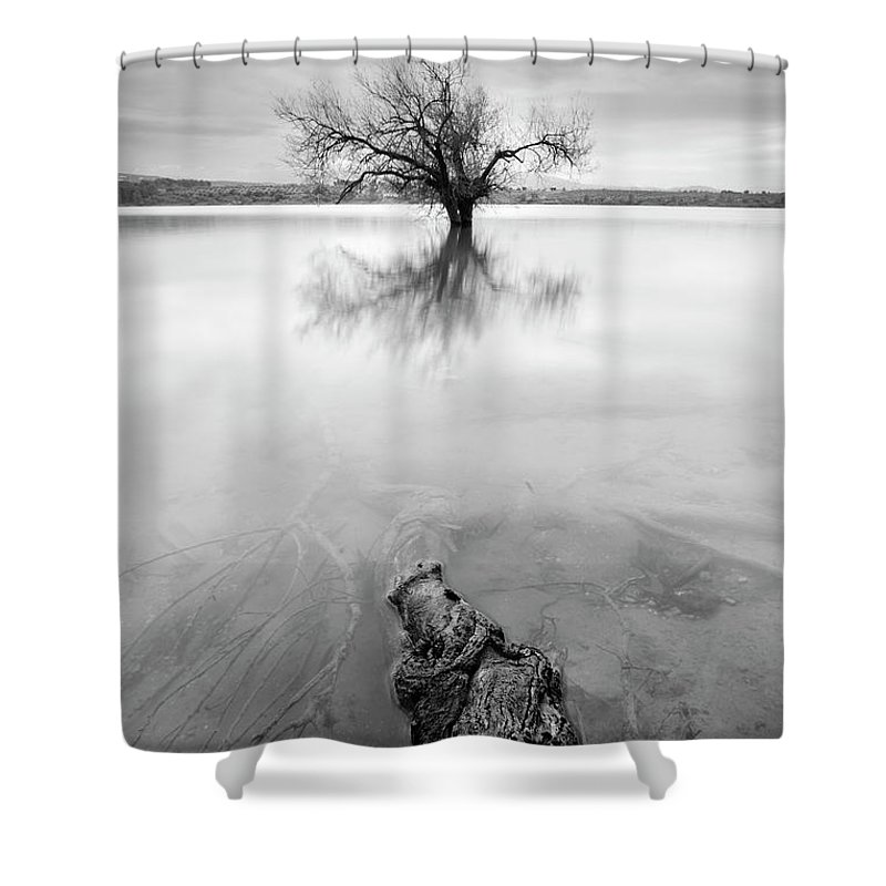 Mono Shower Curtain featuring the photograph Roots And Trees by Guido Montanes Castillo