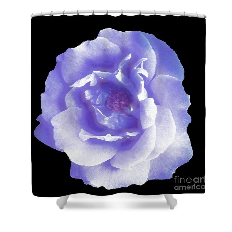 Abstract Shower Curtain featuring the digital art Rose 7 by John Krakora