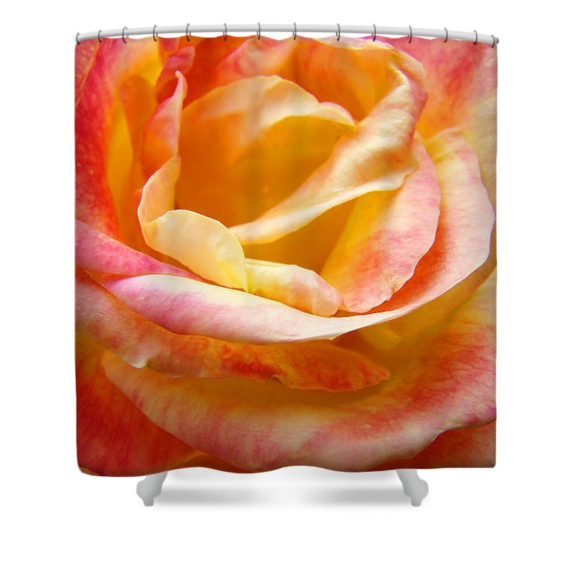 Rose Shower Curtain featuring the photograph Rose Art Pink Yellow Summer Rose Floral Baslee Troutman by Baslee Troutman