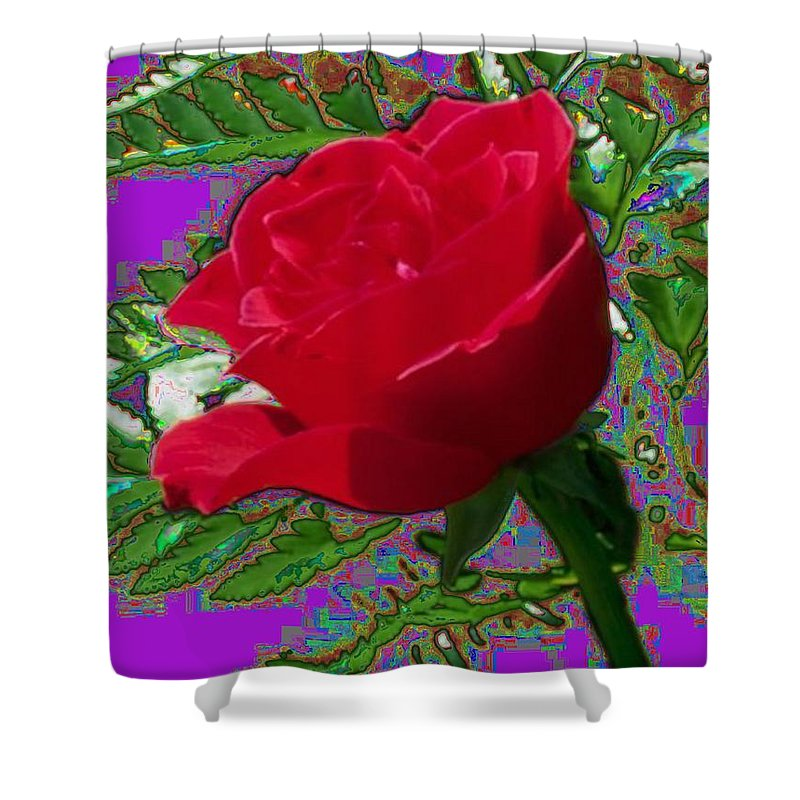 Rose Shower Curtain featuring the photograph Rose For You by Tim Allen