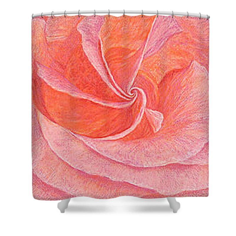 Art Print Prints Fine Giclee Canvas Framed Unframed Rose Pink Roses Garden Floral Flower Flowers Shower Curtain featuring the drawing Rose Sprial Pink Fine Art Print Giclee Garden Flower Floral Botanical Love Romance by Baslee Troutman