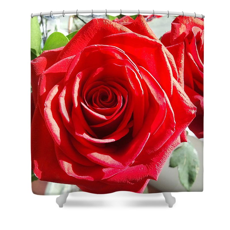 Digital Photo Of Rose Shower Curtain featuring the photograph Rose Surprise by Kathy Sevcik