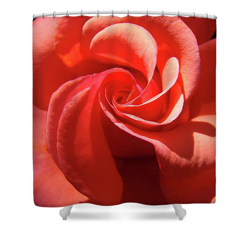 Rose Shower Curtain featuring the photograph Roses Orange Rose Flower Spiral Artwork 4 Rose Garden Baslee Troutman by Baslee Troutman