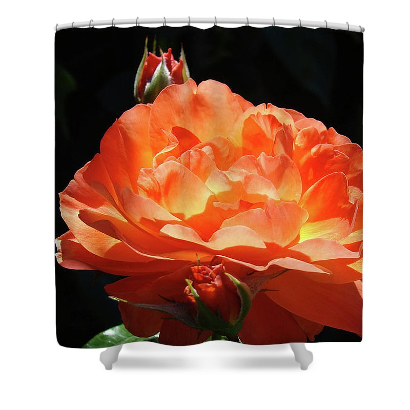Rose Shower Curtain featuring the photograph Roses Orange Rose Flowers Rose Garden Art Baslee Troutman by Baslee Troutman