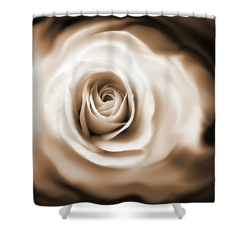 Rose Shower Curtain featuring the photograph Rose's Whisper Sepia by Jennie Marie Schell