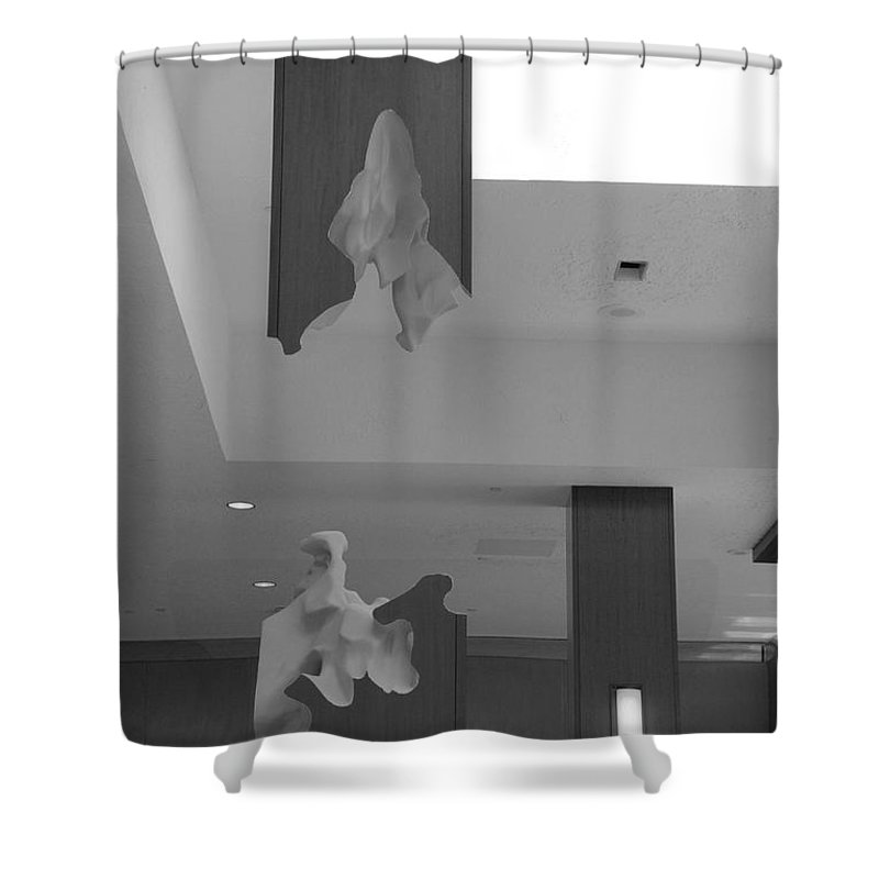 Abstract Shower Curtain featuring the photograph Rotton Stanchon by Rob Hans